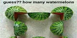 Count or guess the number of watermelons