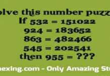 Number puzzle answer