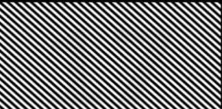 What number is hidden in the image