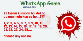 Whatsapp Game