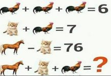 Can you solve Cock Cat and Horse puzzle? Cock + Cock + Cock = 6 Cat + Cock = 7 Horse - Cat = 76 Horse + Cat + Cock = ?