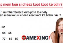 Aap mein kon si cheez koot koot ke bahri hai Whatsapp Game