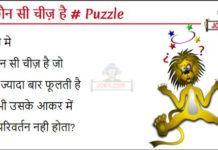 Wo koun see cheez hai hindi puzzle