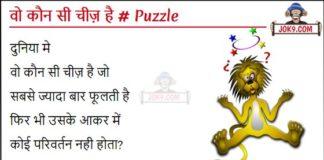 Wo koun see cheez hai hindi puzzle