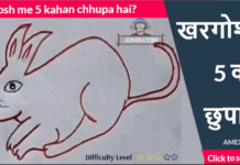 Khargosh me 5 kahan chhupa hai puzzle answer